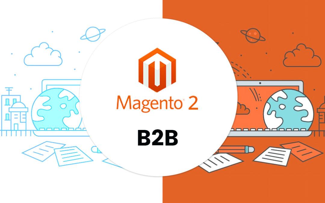 Magento 2 en b2b: een goede match?